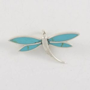 Turquoise Wings Dragonfly
