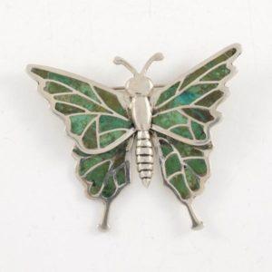 Malaquite Wings Butterfly